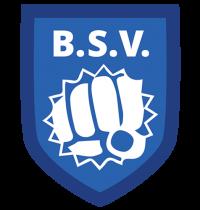 bsv843265935